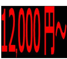蜂の巣駆除料金:12,000円