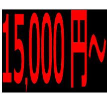 蜂の巣駆除料金:15,000円