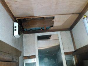 8月中旬・流山市内・平屋の軒下から侵入、屋根裏にキイロスズメバチ巣の駆除-1